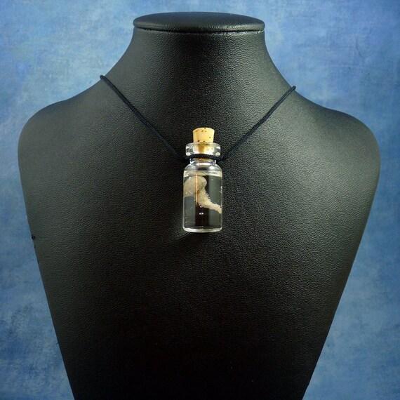Brain Specimen Jar Necklace - Handmade Biology Jewelry