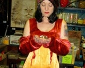 Red & Gold Gypsy Costume Dress