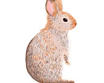 Bunny 5x7 Print