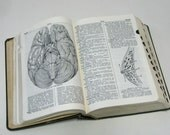 SALE..... 1940s Cyclopedic Medical Dictionary