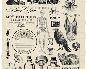 Apothecary Rubber Stamp Collection
