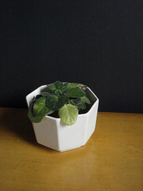 Cream Octogon - Vintage Cream Pottery Vase - Vintage Planter