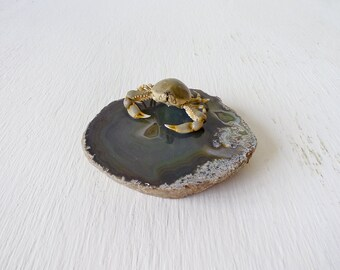 20% SALE - Real Pebble Crab Specimen on Agate Geode Stone - Ocean Life Display - Salt Water Critterz - Crustacean Creation