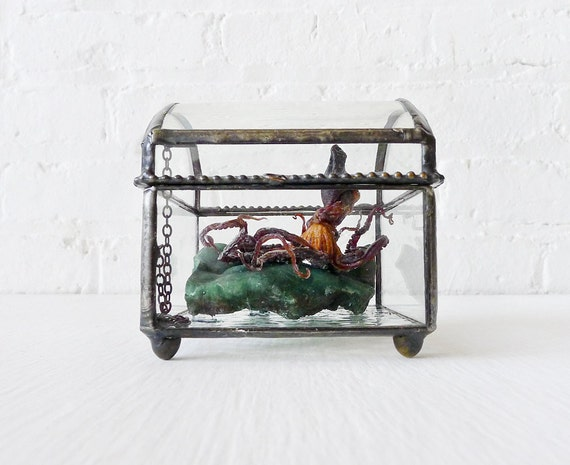 Little Miss Seawitch - REAL Octopus on India Crystal in Beveled Glass Jewelry Box