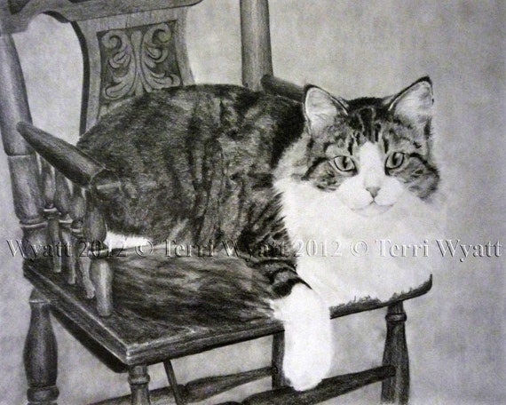 Custom Pet Portrait From Your Photo - 11x14 Original Cat Pencil Sketch Art Drawing From Picture