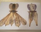 Pressed Flower Art Wedding Card - Bride and Groom