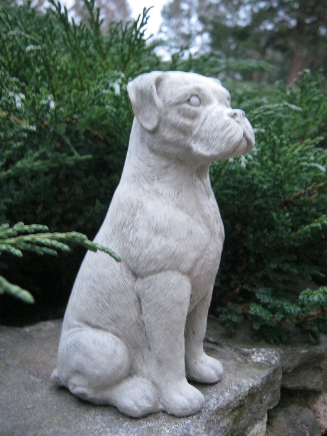 Boxer dog Concrete statues Statues of boxer by WestWindHomeGarden