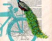 Digital Print Mixed Media Illustration Print Art Poster Acrylic Painting Holiday Decor Drawing Illustration Gifts: Peacock on blue bicycle x