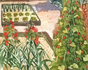 Allotment , the perfect plot, Etching and aquatint  with watercolour