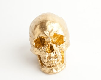 The X-LARGE Fitz - Extra Large Gold Faux Human Head - Resin Skeleton - Sugar Skull Like - Halloween Decor - Decorative Halloween Skull