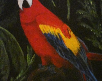 Colorful Macaw Parrot  - Original 8 X 10 Framed Painting
