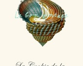 Sea shell beach french vintage art poster free shipping