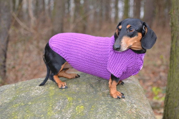 Knitting Patterns For Dachshund Dog Sweaters : Dog Clothes dachshund Dog Sweater Hand Knitting by Puppy1Love