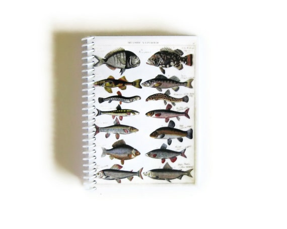 Natural History Fishes Notebook, Back to School Pocket Writing Spiral Bound Journal, Blank Paper Cute A6 Notebook, Sketchbook Gifts Under 15