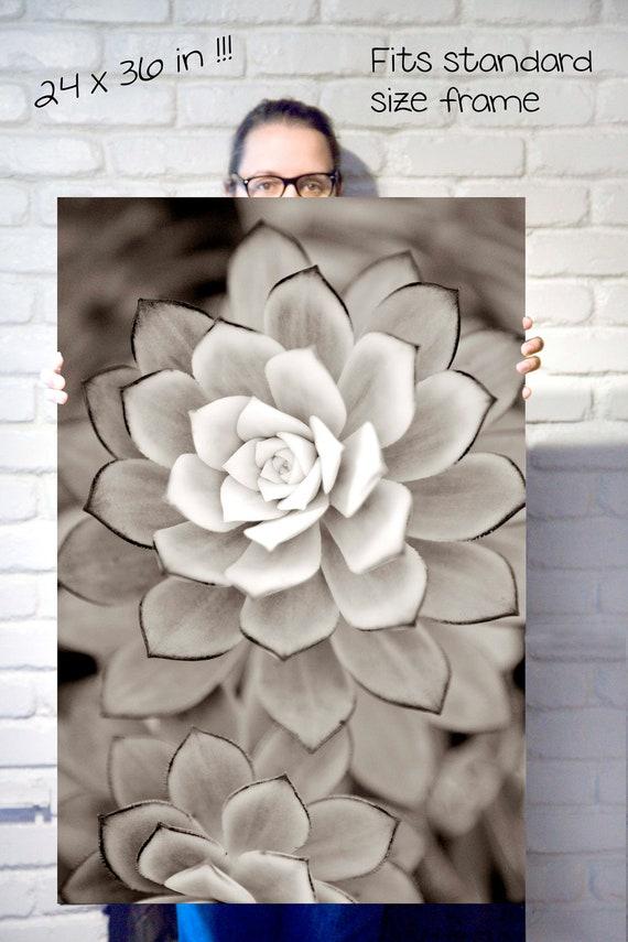 Nature wall art, Black and white art, Succulent Art, Large wall art, Nature photography, Art print, Botanical print, Nature wall decor