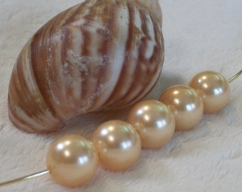 A grade Large Hole South Sea Shell Pearl- champagne -10 mm round with 2-3mm hole- 10 beads