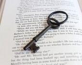 Skeleton Key Keychain Key Ring