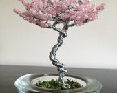 Potted Tree - Spring