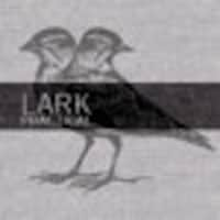 LarkPractical