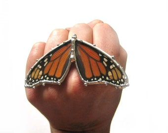 Monarch Butterfly Ring - Real Butterfly Jewelry