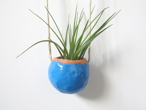 Bright Blue Terracotta clay hanging pinch pot - air plant included