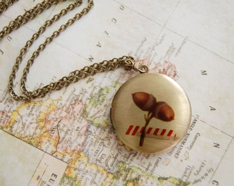vintage acorns brass locket- washi tape detail- screenprint image