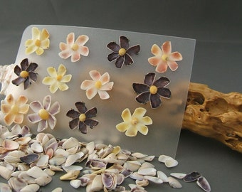 Seashell Flowers, Set of 12 handmade Couquina Shell Flowers, Scrapbook Embellishments, Beach theme wedding table decoration