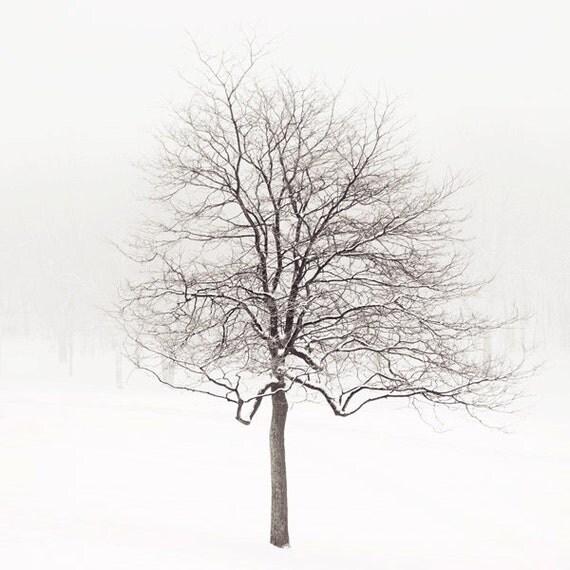 "Lone Tree in Snow, Winter Landscape Photography, Tree Art Print, Minimalist Art Print, White Wall Art, Nature, ""Winter Solstice"""