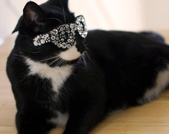 Bling Glasses for Cats