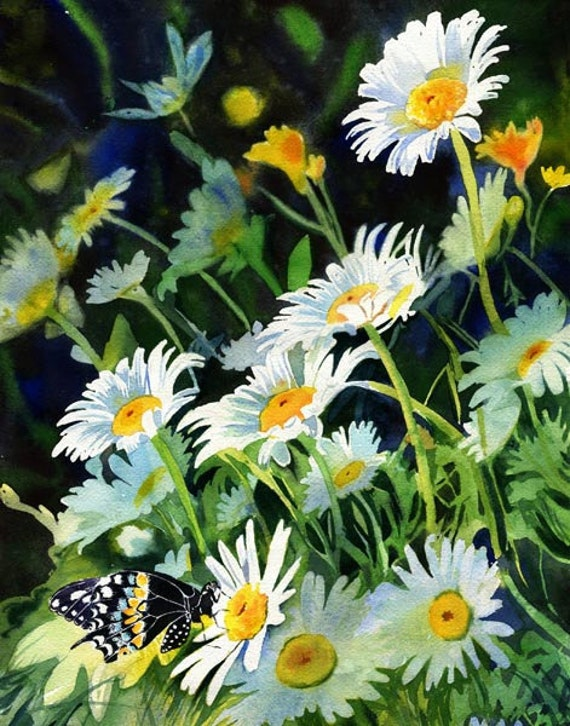Giclée Flower Butterfly Daisy Daisies Floral Garden  Art of a watercolor painting