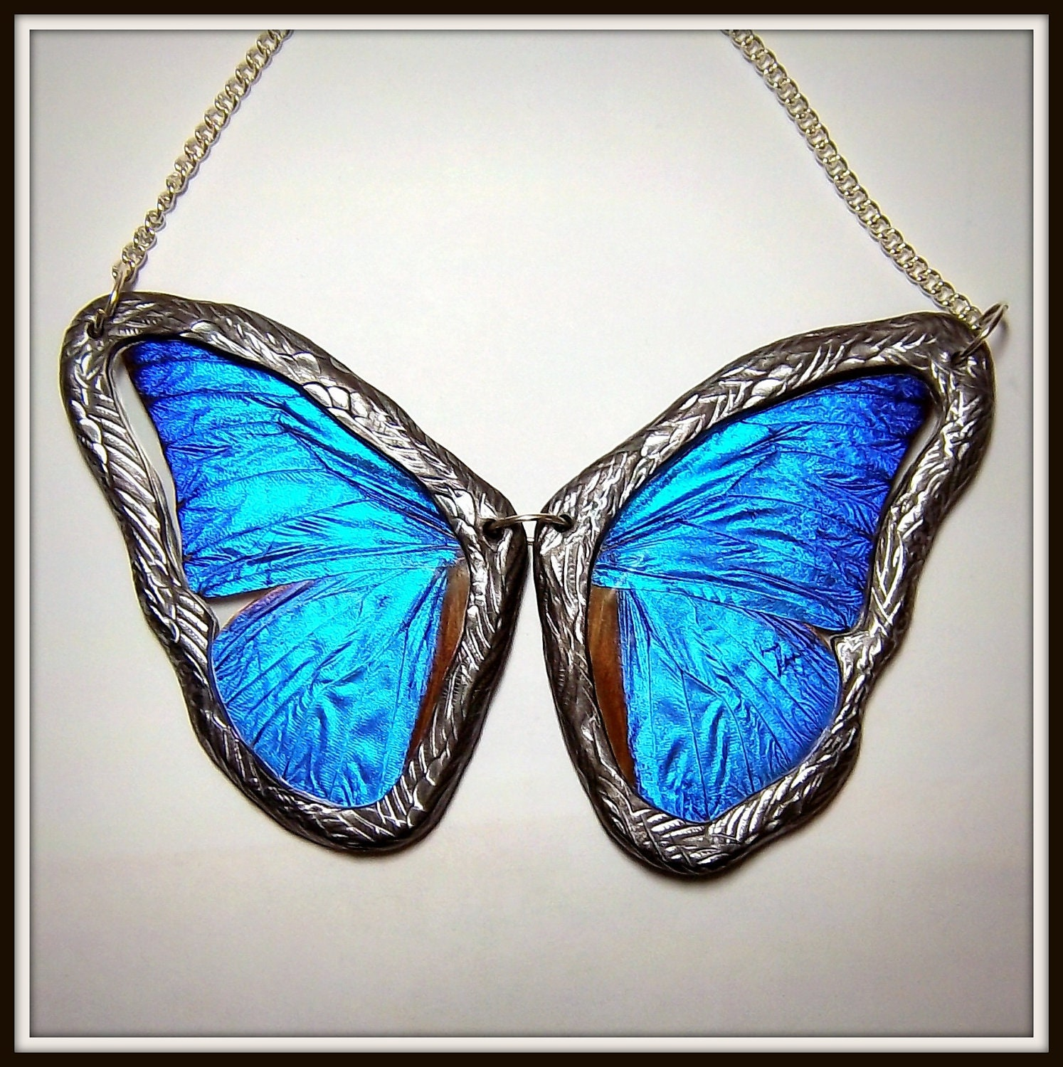 BLUE MORPHO Necklace Real Butterfly Wing Jewelry by ...