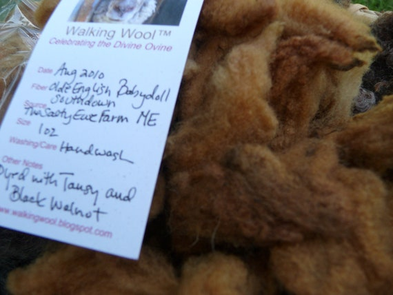 Natural Organic Dye Hand Dyed Sheep Wool Fleece for Fiber Art, 1 oz., Tansy and Black Walnut on Olde English Babydoll Southdown
