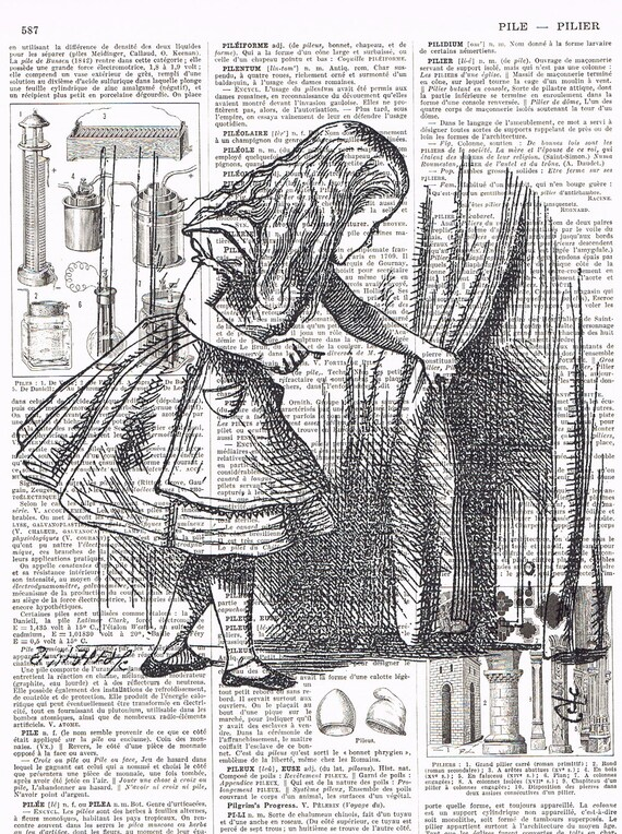 Alice in Wonderland.Antique French Book Page Prints,Retro, buy 3 get 1 free, deal, repurposed,eco,ooak.altered art.unique