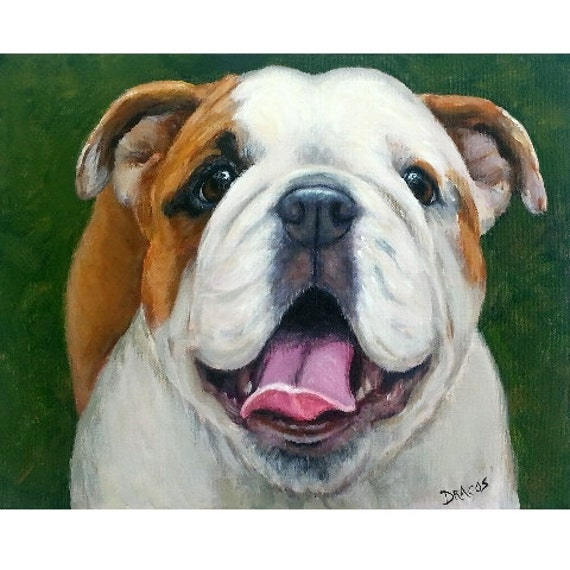 original english bulldog english bulldog original painting by dottie dracos by 1695