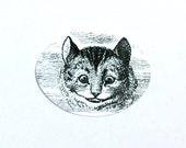 Alice in Wonderland Cheshire Cat Stickers