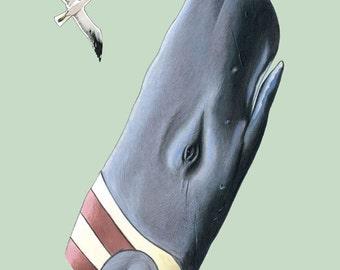 Sperm Whale art print 5x7