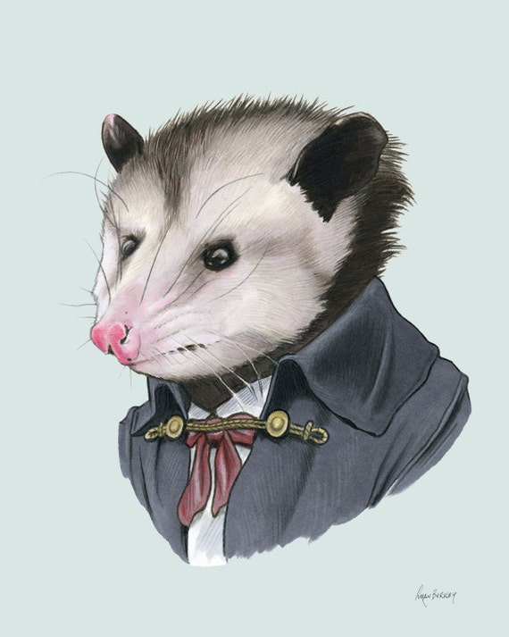 Opossum art print 5x7 by berkleyillustration on Etsy