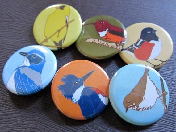 6-Pack of Bird Pinback Buttons (series 2)--Bird Watcher Gift