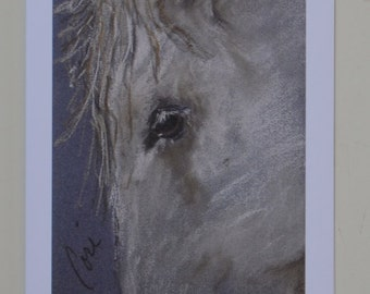 Western Dreamer: Horse Art Note Cards By Cori Solomon