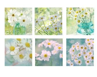 White Daisy Print Set, Nature Photography,  Flower Photos, Floral Wall Decor, Cottage Chic Decor, Floral Print Set