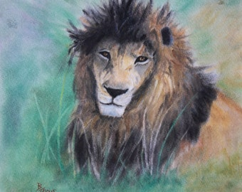Lion's Gaze Original Pastel Painting