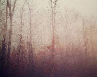 Ethereal Nature Photography, Winter Scene, Forest Photo, Dreamy Peach Color, Morning Fog, Trees Photograph, Autumn Leaves, Mauve