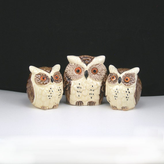 Vintage Owl Salt & Pepper Shakers and Napkin Holder Enesco Ceramic Made in Japan Collectible