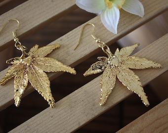 Leaf Gold Earrings, Real Leaf Earrings, Japanese Maple Earrings,  24kt Gold, LESM51