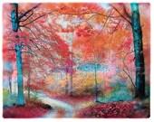 Soft Autumn rain, 8x10, Original Signed, Fine Art Photograph, Fall decor, Home decor, nature photograph, woodland, trees, dirt roads