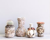 1920's Vintage Shell Vase Collection