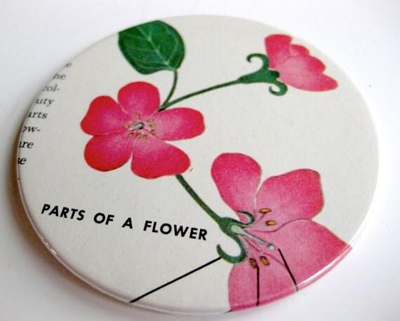 Flower Coasters // Vintage Encyclopedia