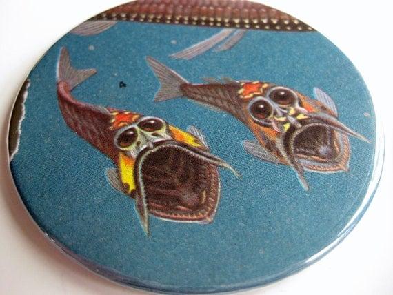 Fish Coasters // Vintage Encyclopedia