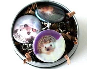 Hedgehog Art Locket Necklace - Colorful, Fun, Magnetic, 3 Pendant Set, Hedgehog Paintings, Recycled, Silver Steel, MeaganV Art, Polarity