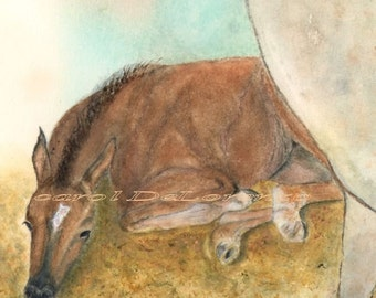 Watercolor Painting, Horse Art, Horse Painting, Horse Watercolor, Horse Art Print, Baby Horse, Equine Art Print Titled  Rest Time